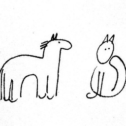 A horse and a cat